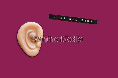 fake ear an i am all