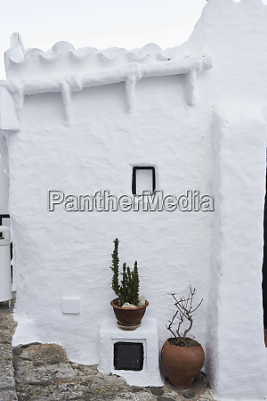 spain menorca binibequer potted plants