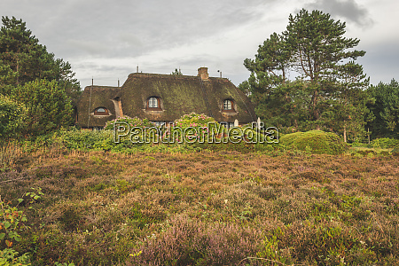 germany schleswig holstein sylt thatched roof