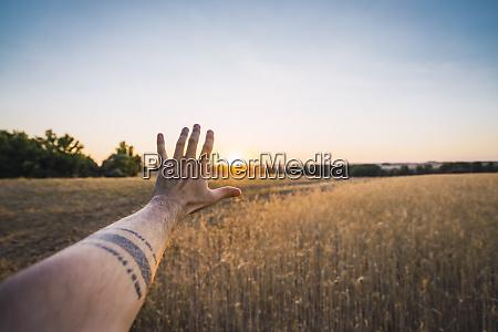 mans hand reaching for evening sun