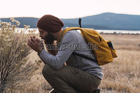 usa north california bearded man examining