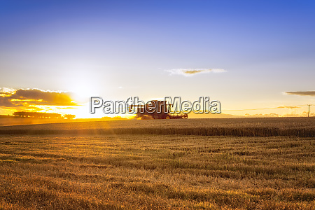 uk scotland east lothian combine harvester