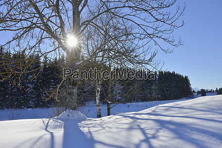 germany werdenfelser land kruen winter landscape