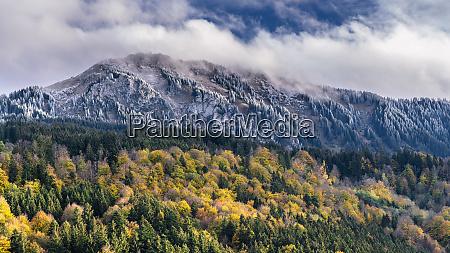 germany bavaria oberallgaeu gruenten in autumn