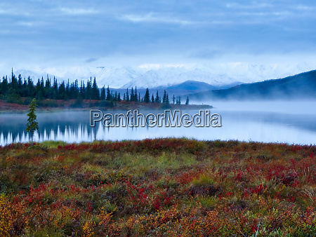 scenic landscape with view of tundra