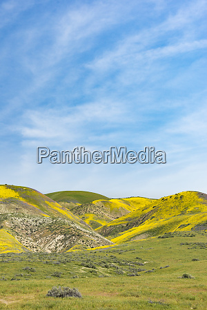 landschaft des carrizo plain national monument