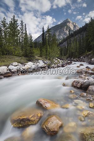 reiseziel fotografie vertikale farbbild banff nationalpark