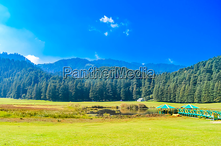 a beautiful golf course up on
