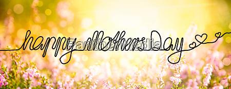 sunny erica flower field calligraphy happy