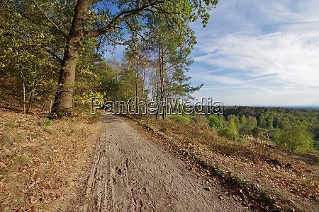 oerlinghausen nature reservat senne ostwestfalen lippe