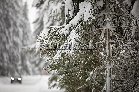 auto auf schneebedeckter winterstrasse inmitten von