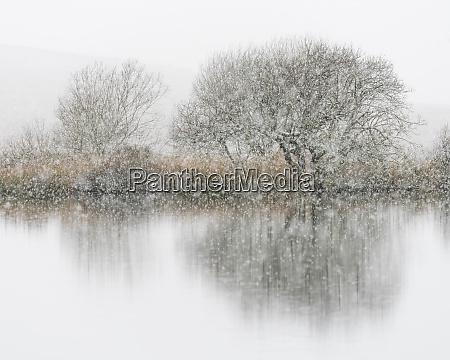 schneefall broad pool gower suedwales grossbritannien