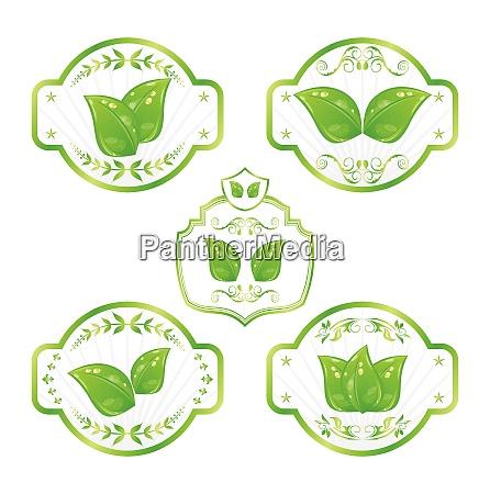 illustration set of green ecological labels