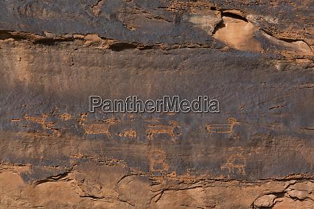 petroglyphs near river house ruins ancestral