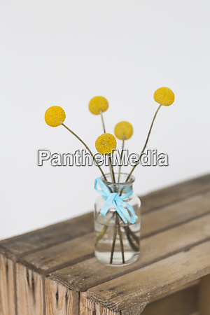 yellow flower heads in vase