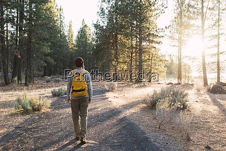 usa north california rear view of