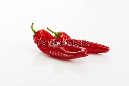 zwei rot spitze paprika gegen weisse