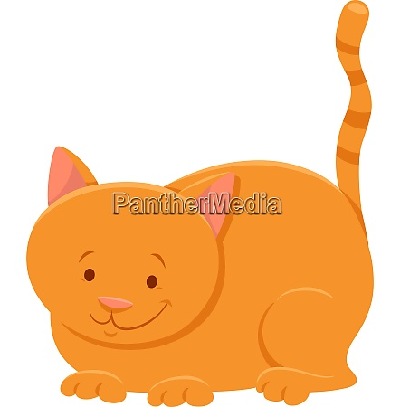 funny yellow cat cartoon animal character