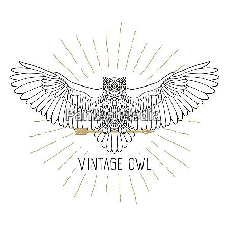owl outline emblem in hipster style