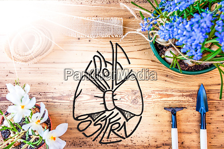 sunny spring flowers calligraphy frohe ostern