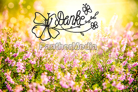 erica flower field calligraphy danke means