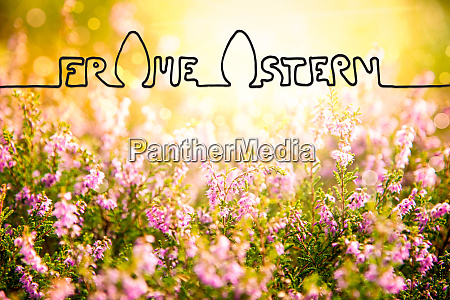 erica flower field calligraphy frohe ostern