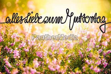 erica flower field calligraphy muttertag means