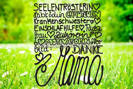 spring meadow daisy calligraphy danke mama