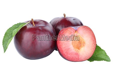plums plum blue fresh fruits fruit