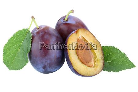 plums plum prunes prune fresh fruits