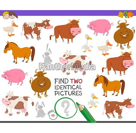 find two identical farm animals educational