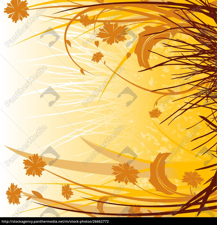 abstrakte, silhouetten, gräser, und, blumen - 26662772