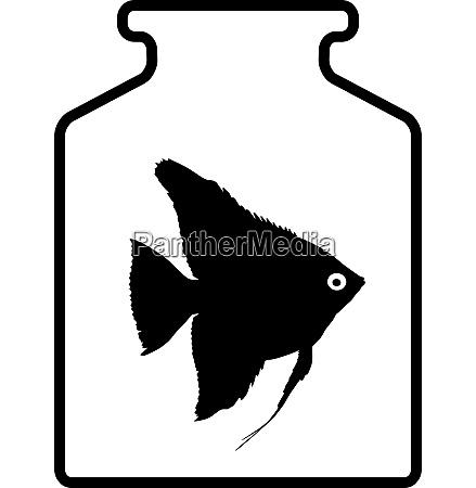 black silhouette of aquarium fish in