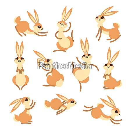 cartoon cute rabbit or hare little