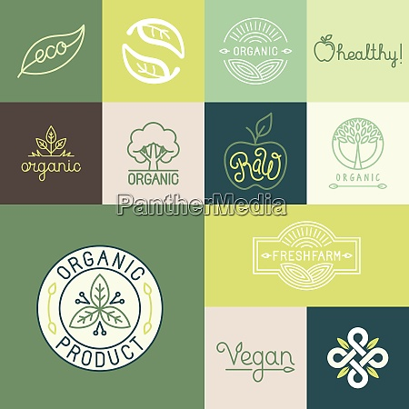 vector set of natural organic vegan