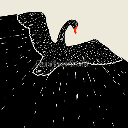 background with flying black swan hand
