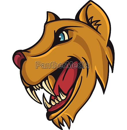 lion animal cartoon mascot lion animal