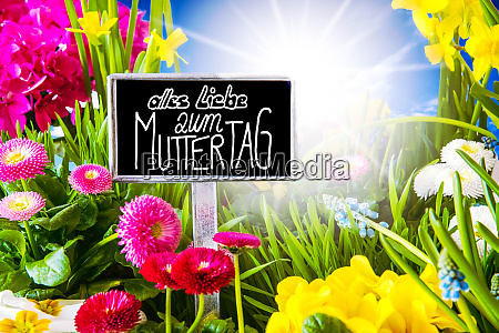 sunny spring flower calligraphy muttertag means