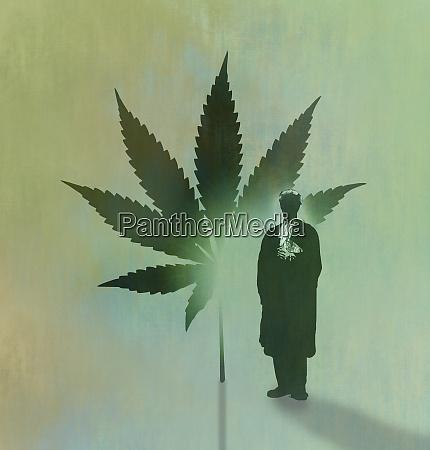 barrister und cannabisblatt