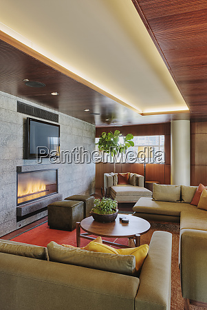 luxury, living, room, with, fireplace - 26809312