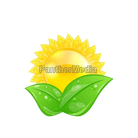 illustration eco friendly icon with sun