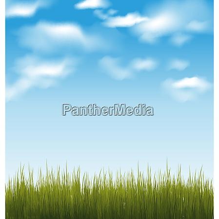 illustration fruehling hintergrund mit gruenem gras