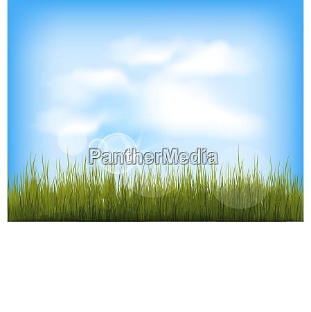 illustration sommerhintergrund mit gruenem gras blauem
