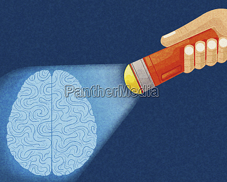 hand shining torch on brain