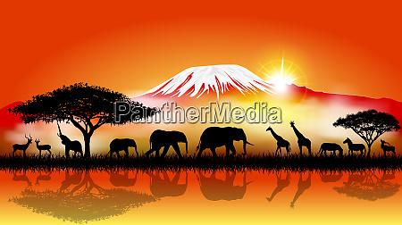 savannentiere auf dem hintergrund des kilimandscharo