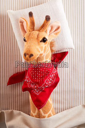 cute sick toy giraffe with bright