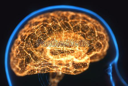 leistungsstarkes mind brain x ray