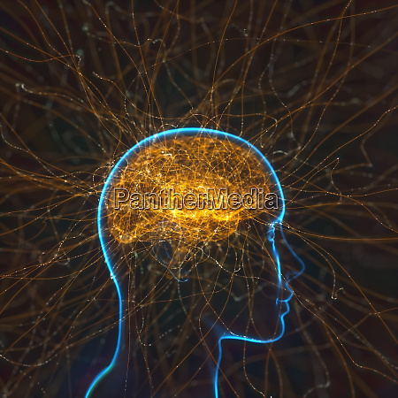 powerful mind brain neural connections