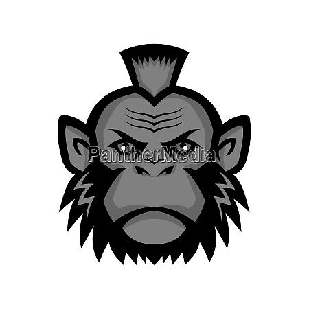 schimpanse traegt mohawk maskottchen