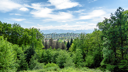 landscape of french countryside with pyrenees
